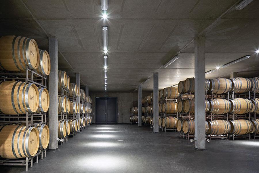Blick in den Keller des Weinguts Klumpp